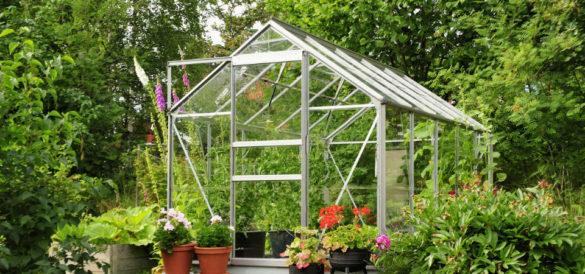 Forlæng sæsonen med et drivhus