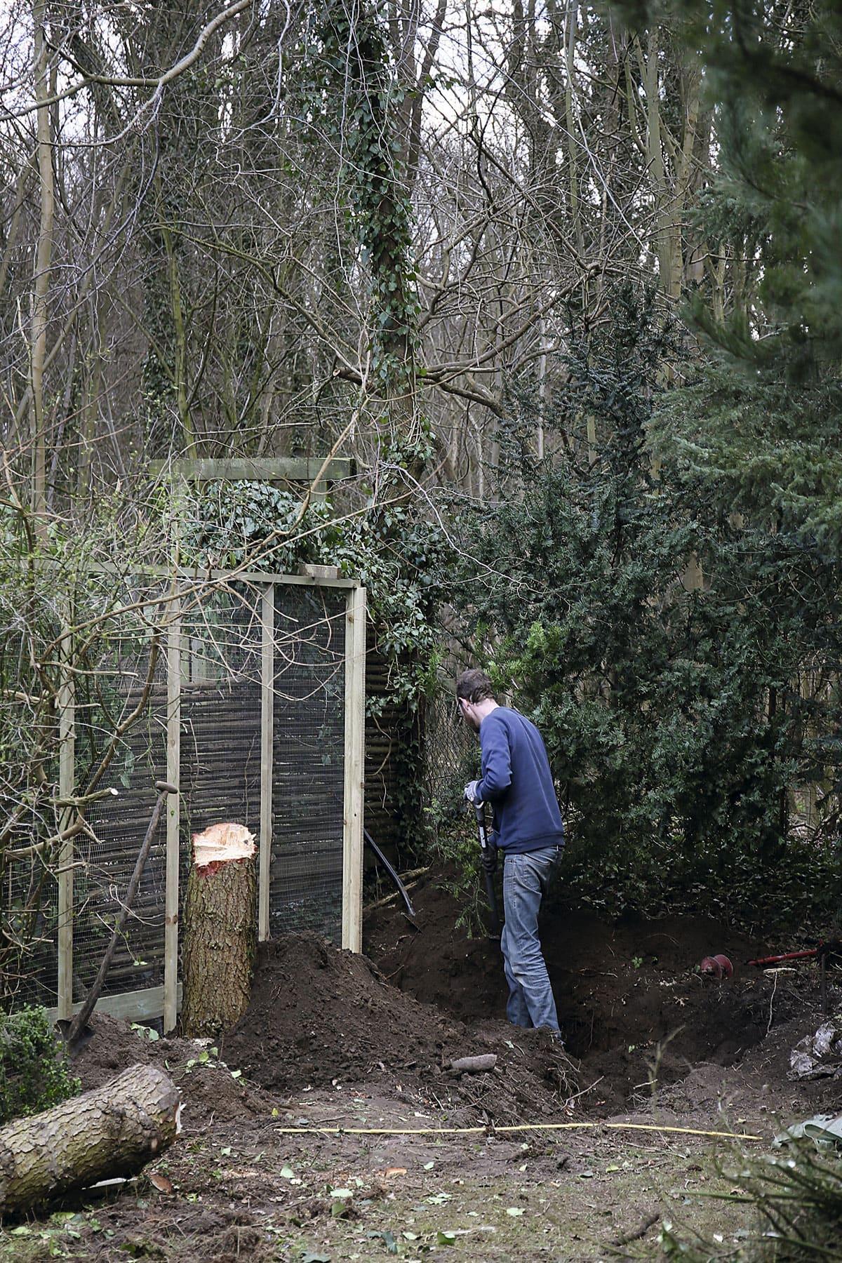 hønsegård udgravning