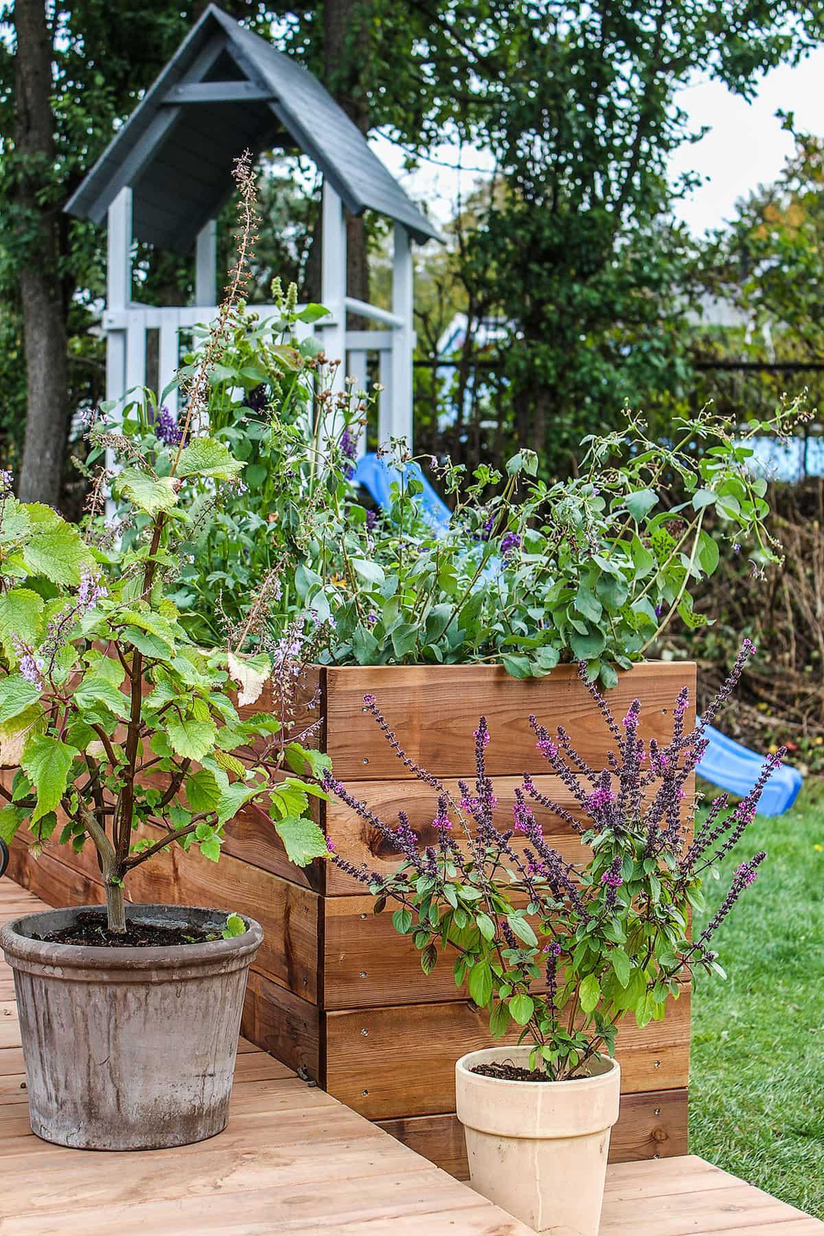 Plantekasser ved luksusterrasse
