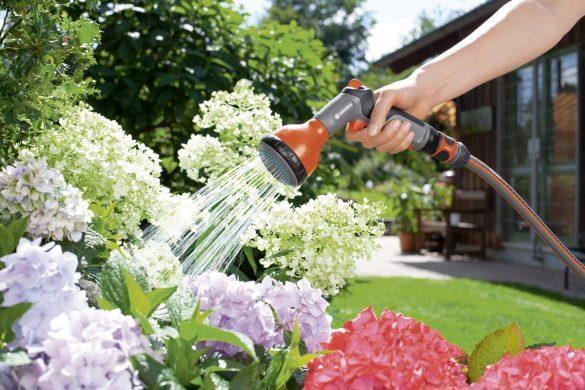 10 tips til vanding i haven